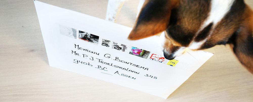 Gerda Bontsema: Toevallig ontving ik zelf de volgende dag met de post mijn bij Bol bestelde boek.