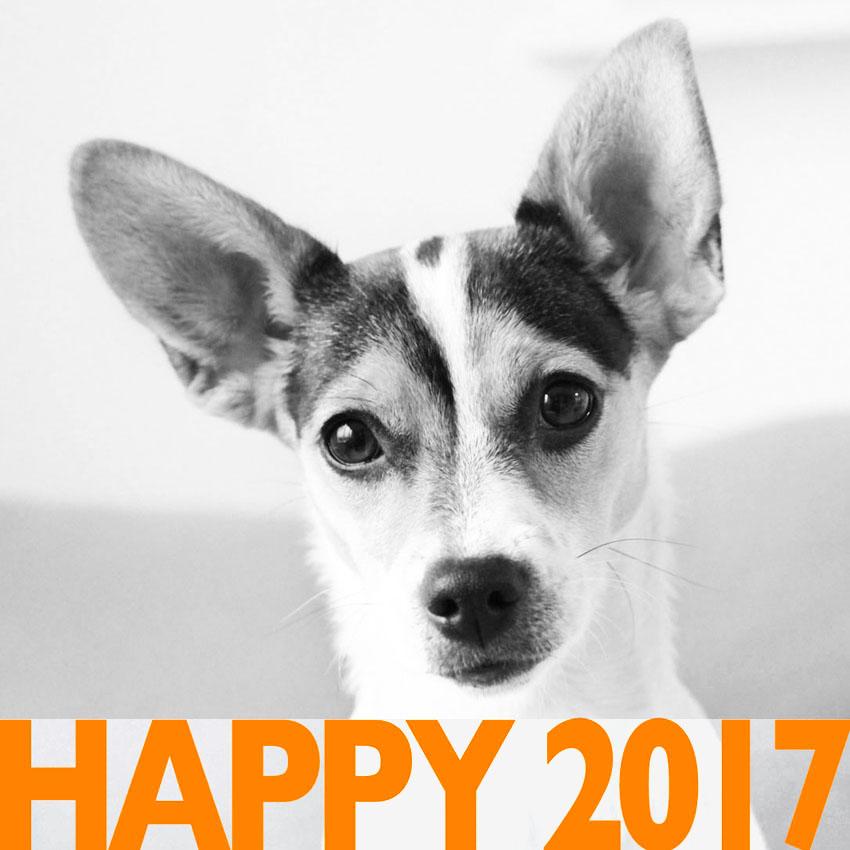 Gerda Bontsema wenst iedereen een gelukkig en gezond 2017